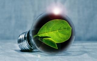 energy saving coolers